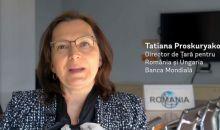 Roma Sounding Board