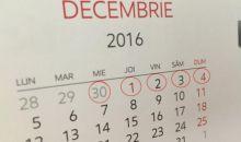 2 Decembrie, declarata zi libera pentru salariatii din sectorul public