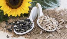 Semintele de floarea-soarelui, sursa de sanatate si energie
