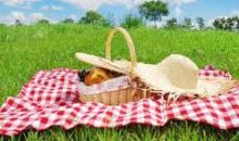 Zona de agrement si picnic de langa Parcul Dendrologic se va deschide de Pasti